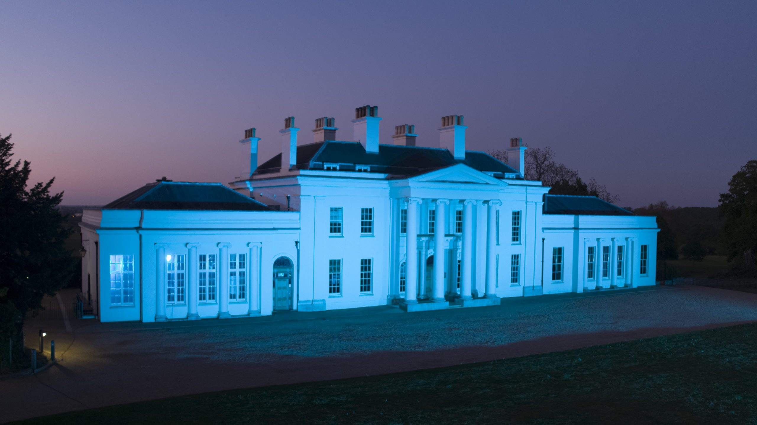 Hylands House NHS Blue